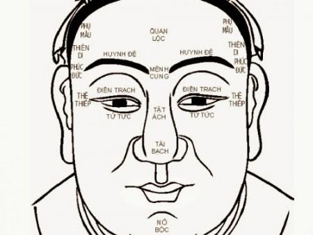 Xem tướng mũi - giải mã tính cách, vận mệnh 1